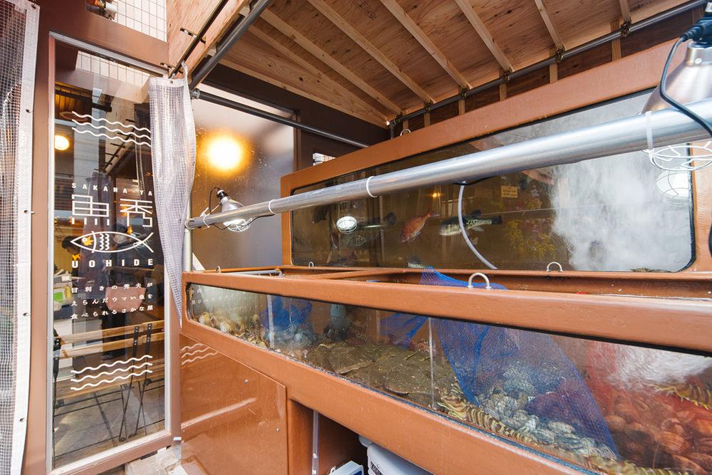 明石天然真鯛や天然平目、車海老など、高級活魚が生簀の中に
