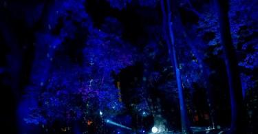 s_00-20190119-IKUTA (7)