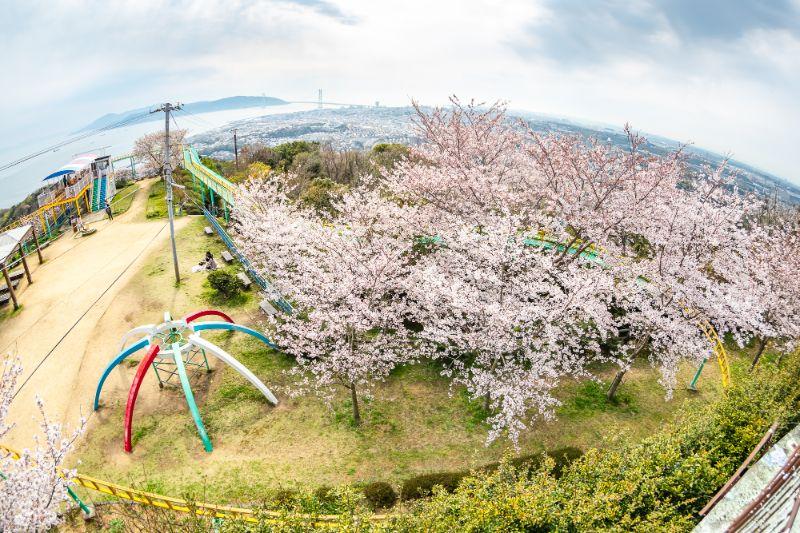 須磨浦公園・須磨浦山上_067