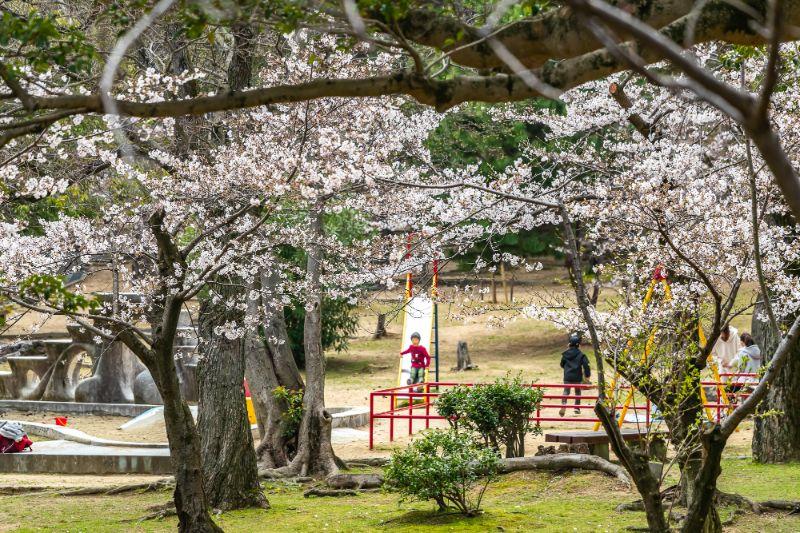須磨浦公園・須磨浦山上_022