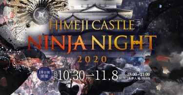 himezi_castle_ninja_night_2020