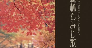 autumn_shinrin2020